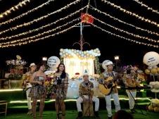 cho-thue-ban-nhac-Flamenco-Tumbadora-Nha-Hang-Elisa